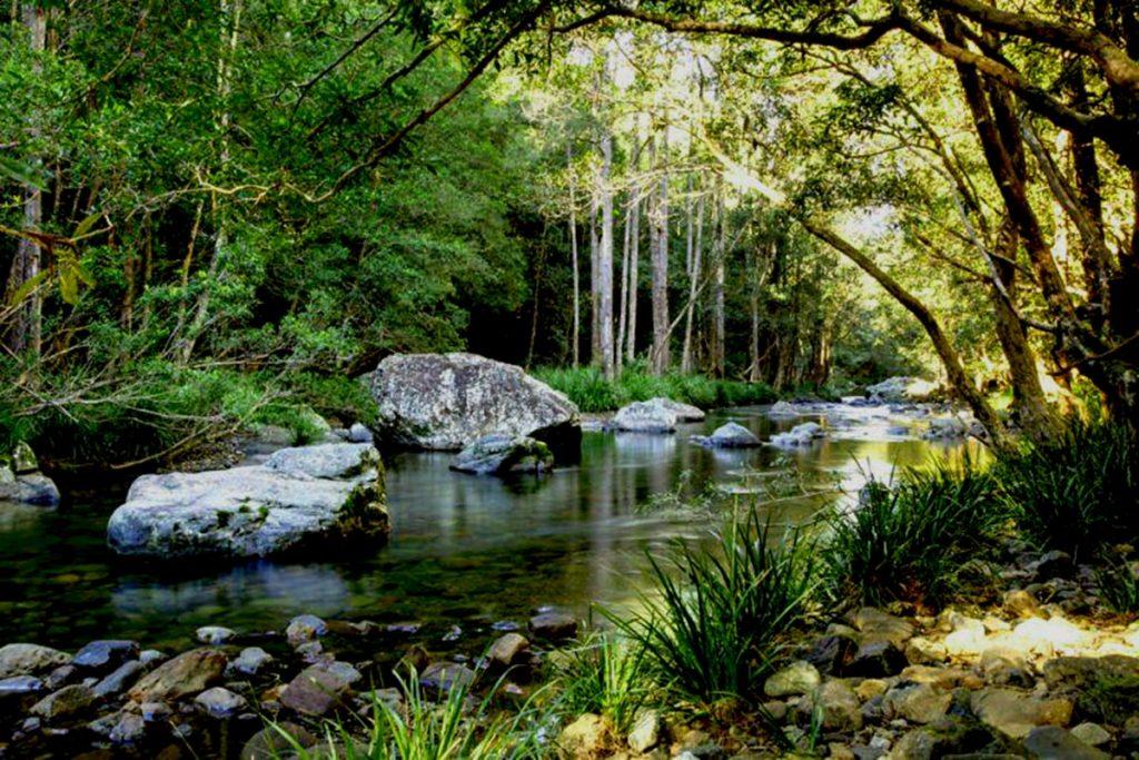 Never Never River in the Promised Land, Gleniffer, Bellingen