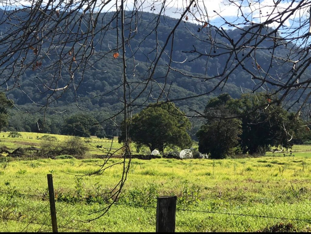 Stunning beauty in country beautiful bellingen nsw