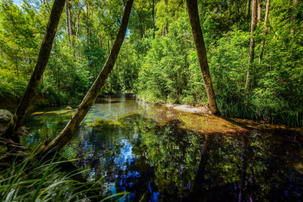 Private pristine Never Never river frontage. Clear fresh water and peaceful serenity.