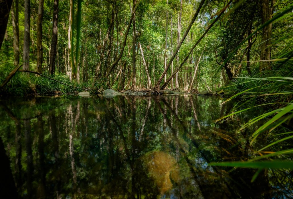 Promised Land's lush private river front, the Never Never River