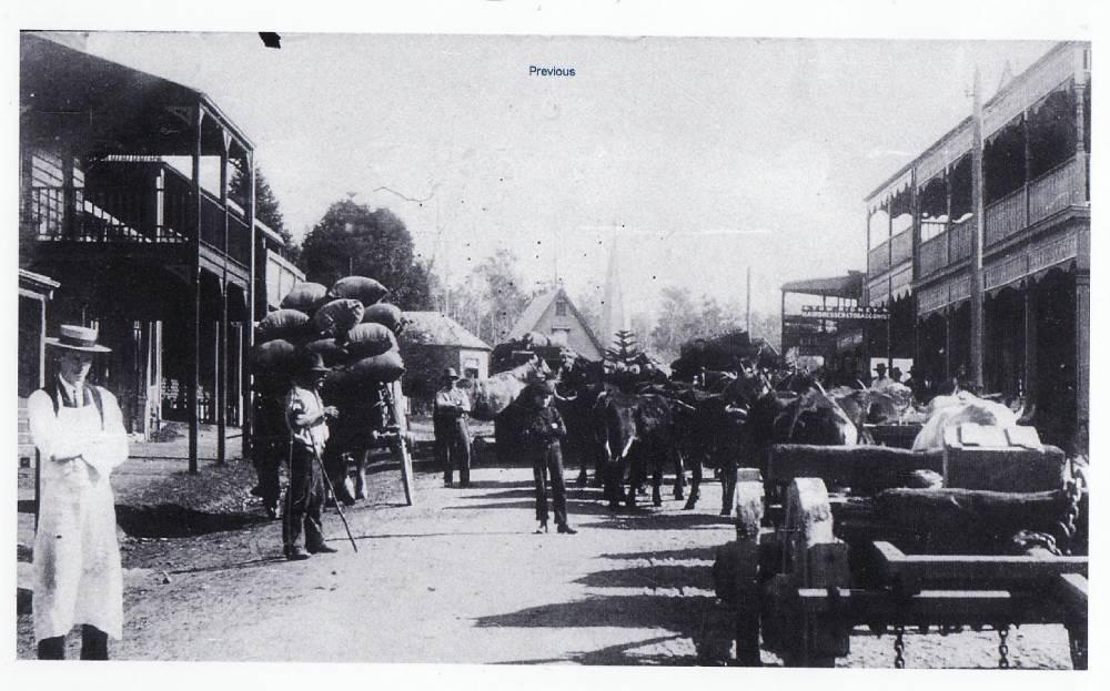 Bellingen town historical photo, circa 1800s