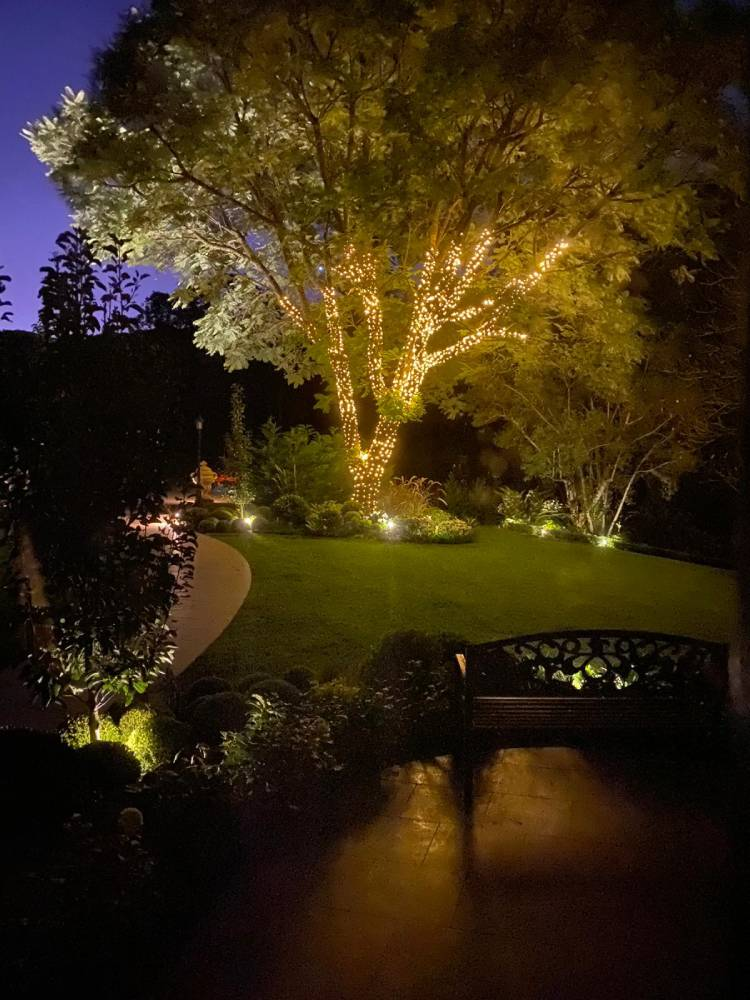 Gorgeous night view garden lights, fairy lights, Hermes Estate Australia