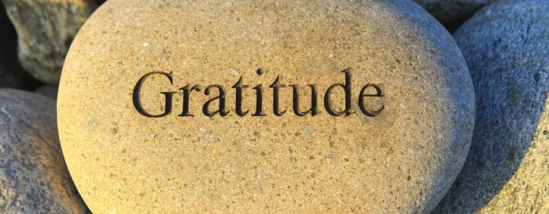 Daily Gratitude - grateful energy at Hermes Estate