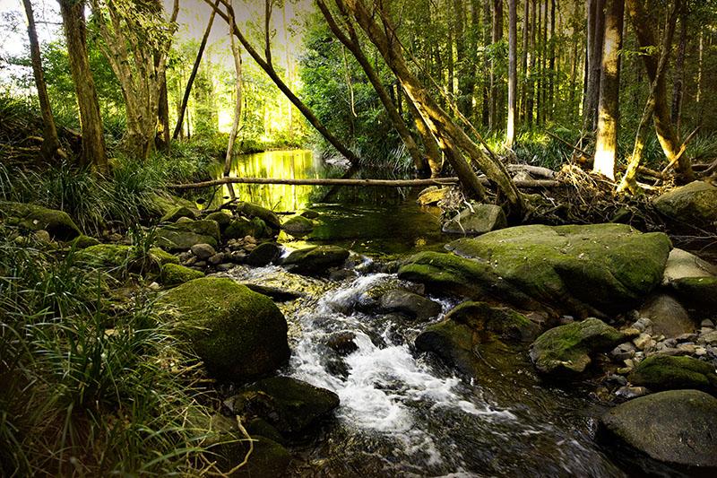 Hermes Estate riverside on the freshwater Never Never River